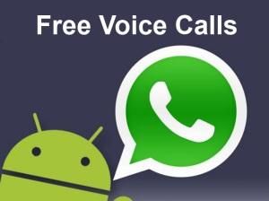 Calls via whatsapp